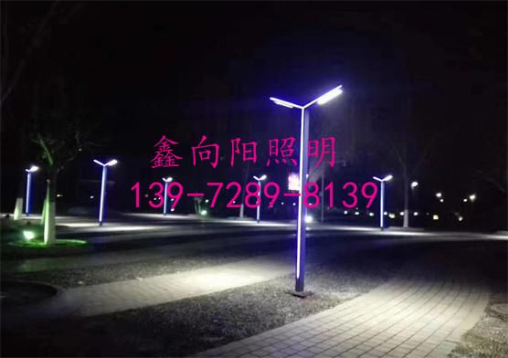LED双头路灯